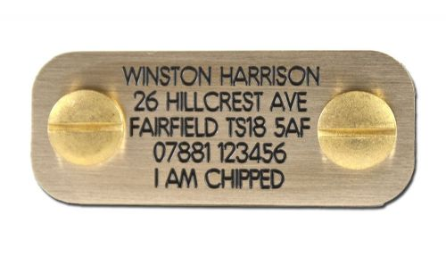Engraved Bolt on dog ID plate Polished Brass  50mm x 20mm